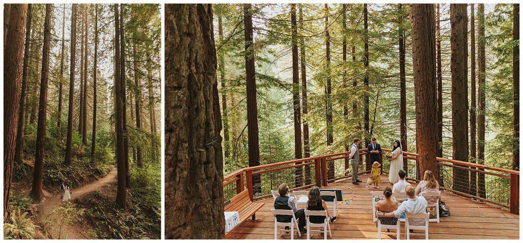 redwood deck hoyt arboretum wedding