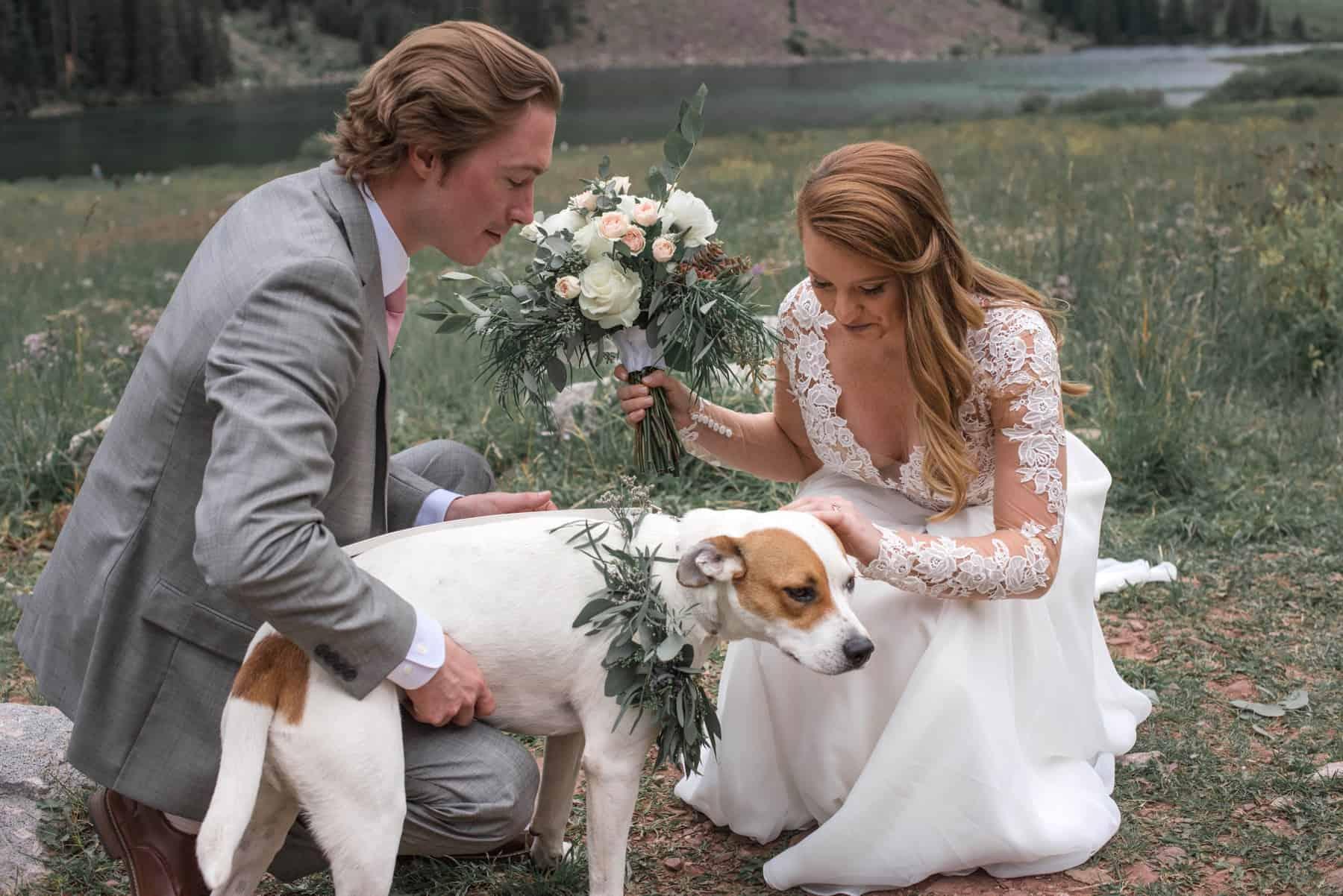 Pet-Friendly Wedding Venues in Colorado