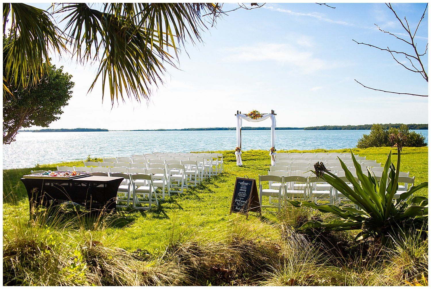 tampa bay watch wedding photos