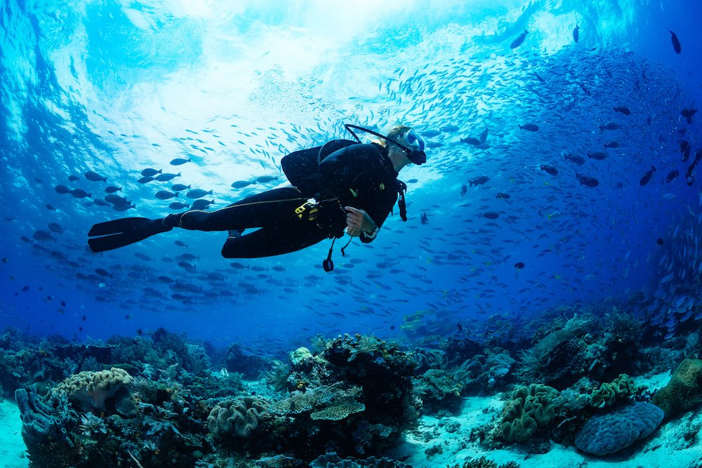 scuba diving underwater elopement