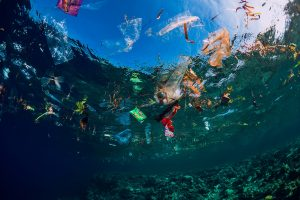 what is the great pacific garbage patch