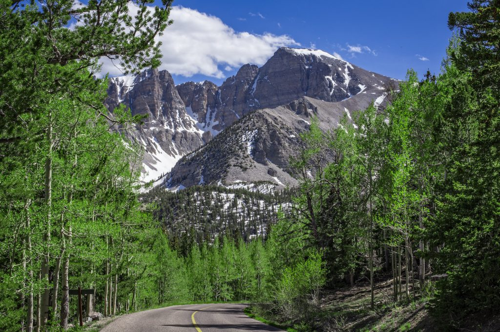 great basin national park elopement photographer
