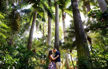 sunken gardens engagement wedding photographer st pete
